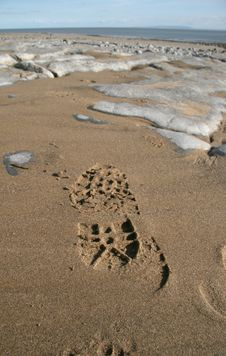 Free Footprint On Wet Sand On Rock Royalty Free Stock Photos - 1286358