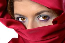 Free Red Scarf Covered Woman Stock Photography - 1287742