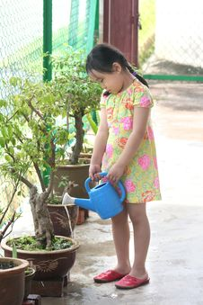 Free Girl Watering Plant Stock Photography - 1288132