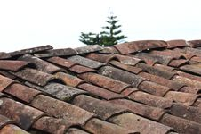 Free Selective Focus Photo Of Brown Roof Shingles Royalty Free Stock Photography - 128037077