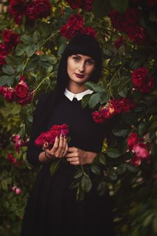Free Photo Of Woman Holding Flowers Stock Photography - 128037742
