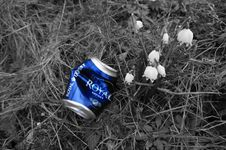Free Blue, Grass, Black And White, Litter Royalty Free Stock Photo - 128257085