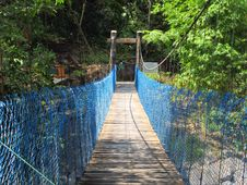 Free Nature Reserve, Bridge, Suspension Bridge, Path Stock Photo - 128440110