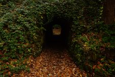 Free Concrete Tunnel In Forest Stock Image - 128558011