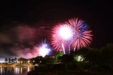 Free Silhouette Of Trees Under Fireworks Stock Photo - 128558120