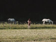 Free Woman Standing Near Two White Horses On Green Grass Field Royalty Free Stock Photography - 128687257