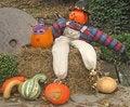 Free Halloween Display Stock Images - 1291924