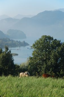 Free Mondsee II Stock Photos - 1292283