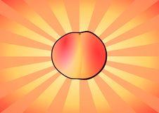 Free Radiant Peach Stock Photos - 1294253
