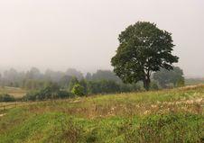Foggy Scene Royalty Free Stock Image