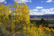 Free Yellow Aspens Above Mountain Valley Royalty Free Stock Photos - 1298278