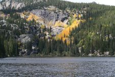 Free Bear Lake Royalty Free Stock Images - 1298789