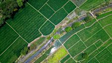 Free Bird S Eye View Of River In Middle Of Green Fields Royalty Free Stock Photos - 129029318