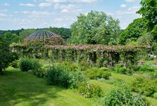 Free Vegetation, Garden, Botanical Garden, Plant Royalty Free Stock Image - 129083326