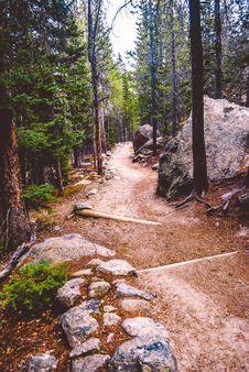 Free Path, Wilderness, Tree, Trail Stock Photos - 129192993