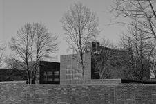 Free Black And White, Monochrome Photography, Tree, Sky Stock Image - 129193541