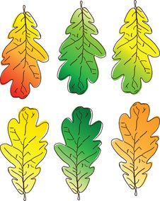 Free Colored Leaves Stock Photos - 12932733