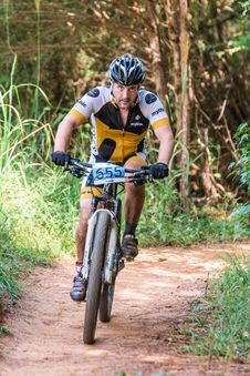 Free Man Riding Mountain Bike Stock Photos - 129415213