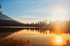 Free Reflection Of Sun And Trees On Water Stock Photography - 129415252
