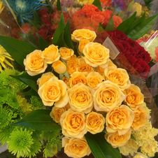 Free Flower, Yellow, Floristry, Flower Arranging Stock Photography - 129547672