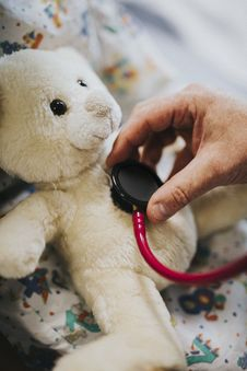 Free Person Using Stethoscope On Bear Plush Toy Stock Photography - 129686772