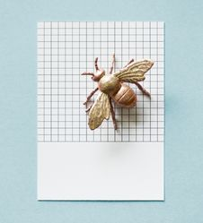Free Gold-colored Bee Decor On White Surface Stock Image - 129686801