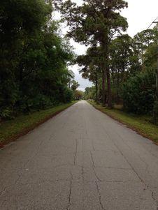 Free Road, Path, Lane, Tree Royalty Free Stock Image - 129752526