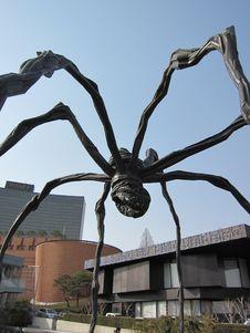 Free Arachnid, Tree, Metal, Arthropod Stock Image - 129752571