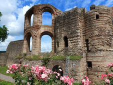Free Flower, Ruins, Historic Site, Medieval Architecture Royalty Free Stock Photos - 129752668