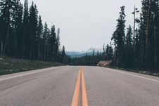 Free Gray Road Surrounded By Trees Stock Image - 129875011