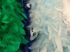 Free Artificial Feathers Stock Image - 137341