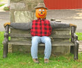 Free Pumpkin Head Scarecrow On A Bench Royalty Free Stock Photo - 1301665