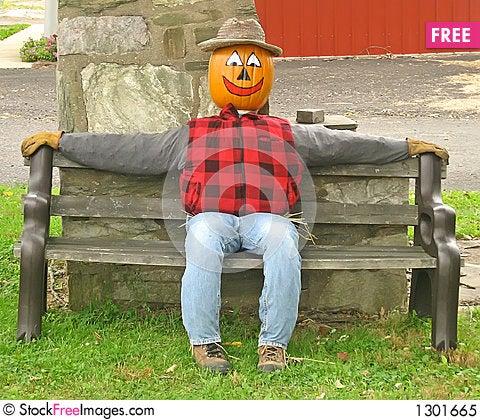 Pumpkin Head Scarecrow on a Bench Stock Photo