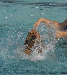 Free Golden Swim Stock Images - 1300184