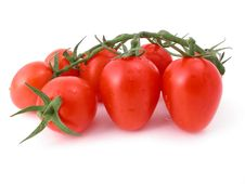 Free Tomatoes Against A White Background Royalty Free Stock Photos - 1300798