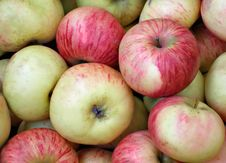 Free Apples Stock Image - 1302181