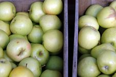 Free Crates Of Green Apples Royalty Free Stock Photos - 1309618