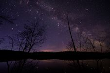 Free Leafless Trees Under Starry Night Sky Stock Image - 130290091