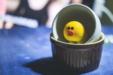 Free Yellow Duckling In White Container On Blue Textile Stock Images - 130423024