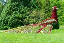Free Botanical Garden, Garden, Flora, Grass Stock Photos - 130473143