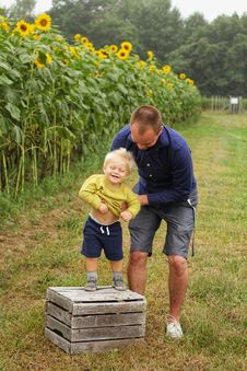 Free Man Holding Smiling Child Standing On Brown Wooden Crate Near Sunflowers Royalty Free Stock Photos - 130492108