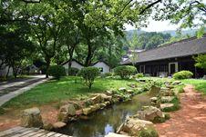 Free Property, Vegetation, Plant, Tree Royalty Free Stock Images - 130563189