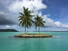 Free Coconut Trees Planted On Island Royalty Free Stock Photography - 130575097