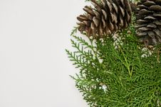 Free Close-Up Photography Of Pine Cones Stock Photos - 130575543