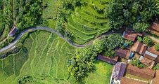 Free Aerial Photography Of Rice Terraces Royalty Free Stock Photo - 130707035