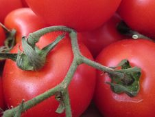 Free Natural Foods, Vegetable, Tomato, Plum Tomato Royalty Free Stock Photos - 130784908