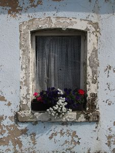 Free Flower, Window, Wall, House Royalty Free Stock Images - 130785019