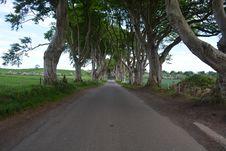 Free Road, Tree, Path, Lane Stock Photo - 130785440
