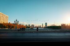 Free Bird Flying Over Bridge Royalty Free Stock Images - 130791449