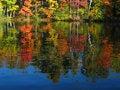 Free Autumn Lake Reflection Royalty Free Stock Image - 1314316